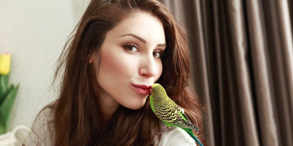 Girl Getting Kiss From Parakeet